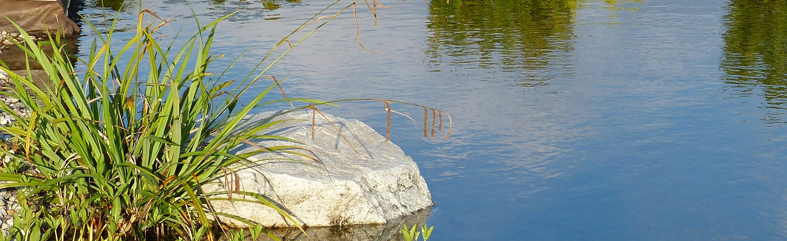 Teich Sana e Salva