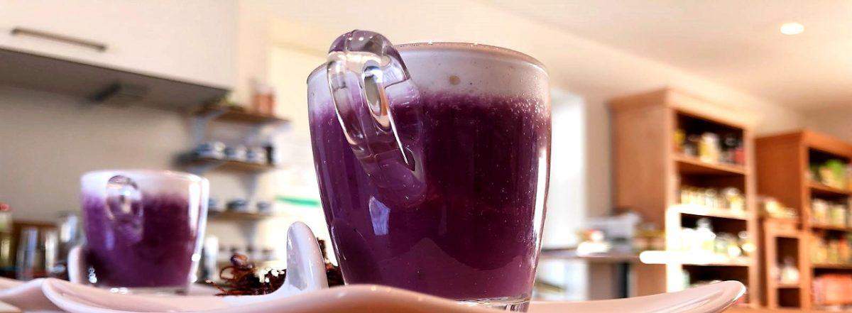 Blaukraut Cappuccino Sana e Salva